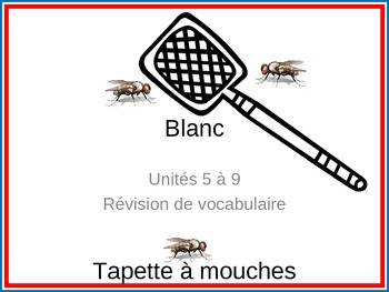Blanc units 5-9 Tapette à mouches Flyswatter vocabulary review