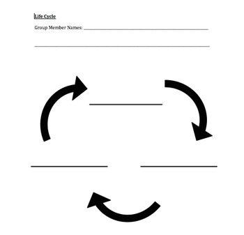Blank 3 Part Life Cycle