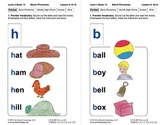 Blend Phonemes: Lesson 6, Book 13 (Newitt Decoding Series)