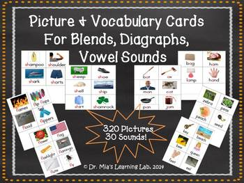 Blends, Diagraphs, & Vowel Sounds Picture/Vocabulary Word Cards (320 pictures)