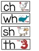 Blends, Digraph and Vowel Chunks Word Wall Cards