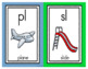 Blends and Digraphs Chart and Posters