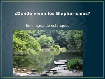 Blepharisma Power Point (In Spanish)