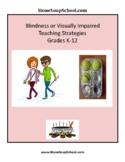 Visual Impairment or Blindness Teaching Strategies