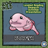 Blobfish - 15 Zoo Wild Resources - Leveled Reading, Slides