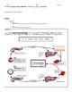 Blood Glucose Level Feedback (Insulin & Glucagon)