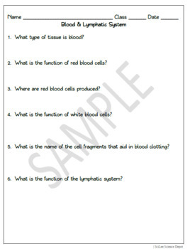 Blood & Lymphatic Sytstem: PowerPoint, Student Guided Notes, Worksheet