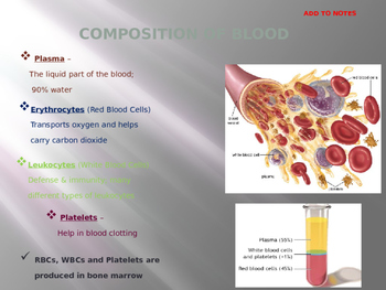 Blood Overview PowerPoint