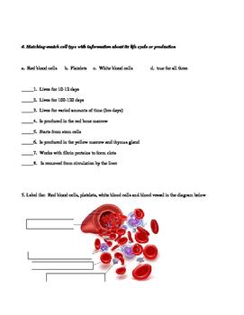 Blood Quiz