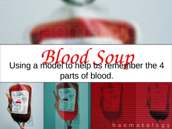 Blood Soup Edible Model - 4 parts of blood in the human body