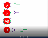 Blood Typing Videos