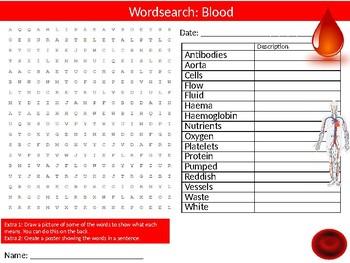 Blood Wordsearch Puzzle Sheet Keywords Science Biology