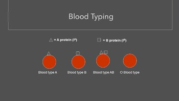 Blood and Blood Components Complete Lesson Bundle (Powerpoint and Assessments)