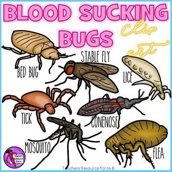Blood sucking bugs clip art