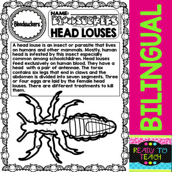 Bloodsuckers - Head Louses - Reading Comprehension and worksheets - Bilingual