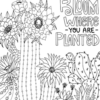 Free Cactus Coloring Page | 350x350