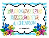 Blooming Brights & Chevron Classroom Decor Bundle