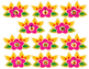 Phoneme Segmentation - Blooming Phoneme