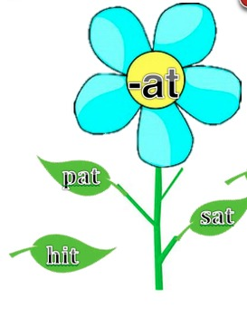 Blooming Word Families