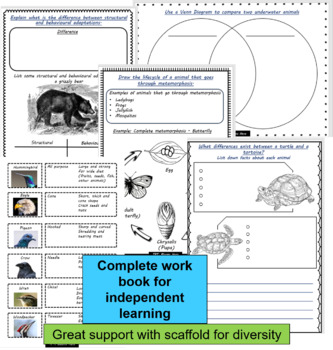 Blooms Taxonomy Animal Adaptations Activities