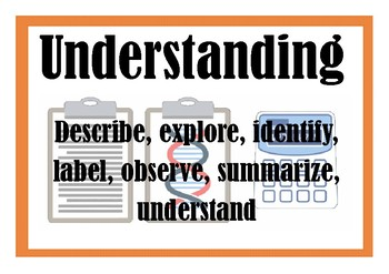Bloom's Taxonomy for Science - verb posters