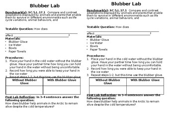 Blubber Adaptation Lab
