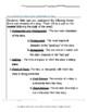 Blubber--Blume - Literature and Grammar Unit