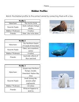 Blubber Reflection Sheet