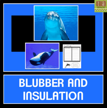 Blubber and Insulation Experiment