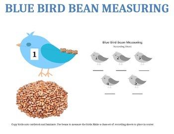 Blue Bird Measurement