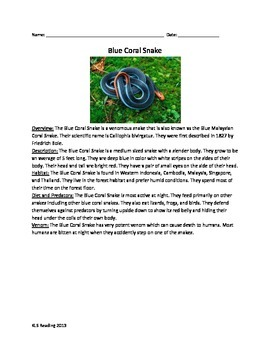 Blue Coral Snake - Review Article Questions Vocabulary Wor