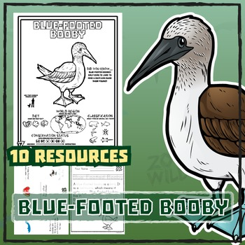 Blue Footed Booby -- 10 Resources -- Coloring Pages, Readi