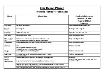 Blue Planet - Frozen Seas - Adaptations and Feeding Relationships