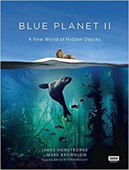 Blue Planet II: Big Blue Worksheet, Word Search, Word Jumble Blue Planet 2