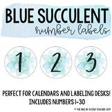 Blue Succulent Number Labels