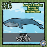Blue Whale - 15 Zoo Wild Resources - Leveled Reading, Slides & Activities