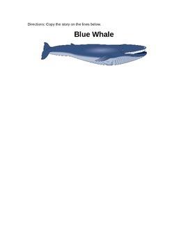 Blue Whale Activity