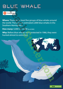 Blue Whale Endangered Animal Poster