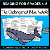Whale Research Project Non Fiction Reading Passage and Whale Worksheet