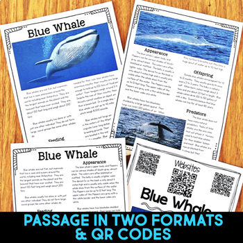 Blue Whale: Informational Article, QR Code Research & Fact Sort