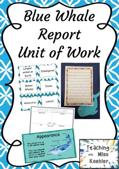 Blue Whales Animal Report Unit of Work
