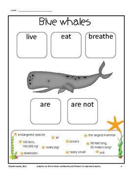 Blue Whales Graphic Organizer (1 in English, 1 in Spanish!)