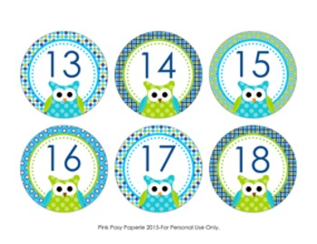 Blue and Green Owl Cubby Number Labels 1-30