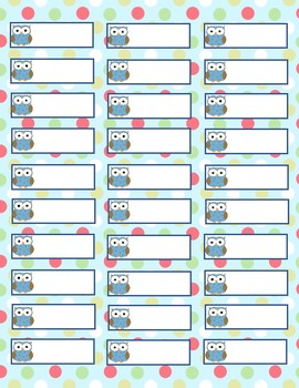 Blue and Green Owl Labels - Size #5160 Avery Standard