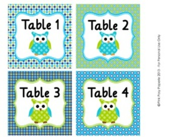 Blue and Green Owl Theme Classroom Decor Table Numbers