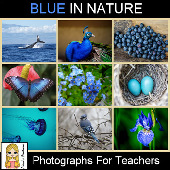 Blue in Nature Photograph Pack