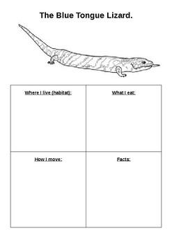 Blue tongue lizard activity sheet