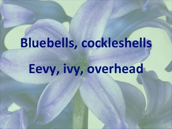 Bluebells, Cockleshells