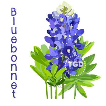 Bluebonnet - Bluebonnet clip art, Bluebonnet Printable Tracey Gurley Designs