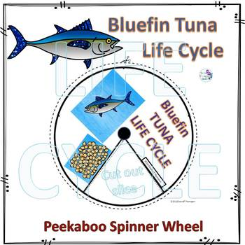 Bluefin Tuna (Life Cycle Spinner)